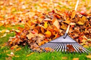 5 Common Scenarios Leading to Injuries in Autumn in Chicago
